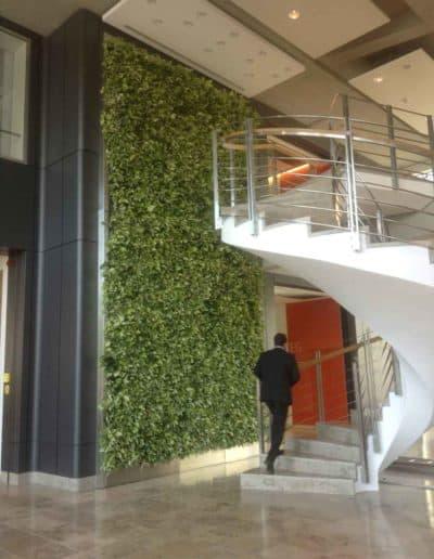 Attraktives Treppenhaus durch die grüne Wand