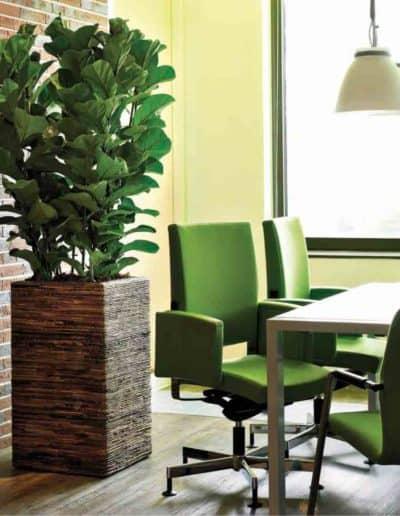 Bananenblatt Vase Quadrat