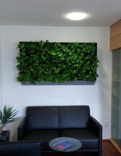 Besucher Wartebereich - aufgelockert mit einer grünen Wand