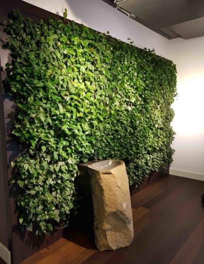 Die grüne Wand als Ort der Erfrischung, verbunden mit einem Wasserbecken