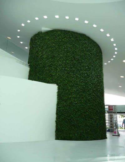 Die grüne Wand als ovale Form gilt als ideal, denn es wirkt besonders ausgeglichen