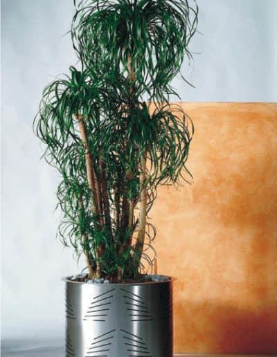 Edelstahl Pflanzengefäß mit Längsschnitt