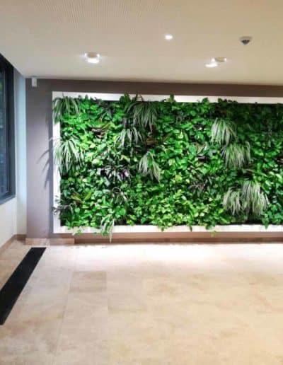 Projekt: Grüne Wand mit umlaufendemn lackierten Rahmen aus Edelstahl