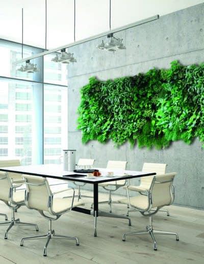 Kalter Beton und grüne Wände als Kontrastprogramm