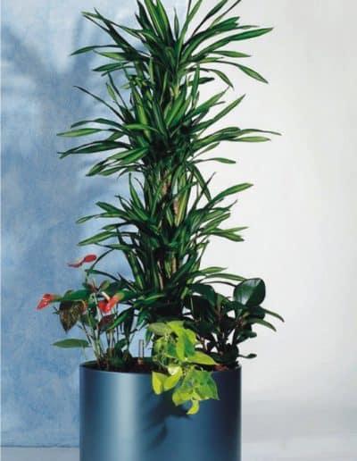 rundes kunststoff Pflanzengefäß