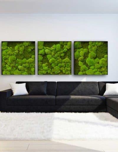 Moosbilder Wohnbereich