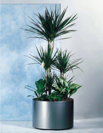 Pflanzengefäß Dynamik rund - Kunststoffgefäße