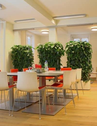Schall- und Sichtschutzelemente in Verbindung mit einer grünen Wand innerhalb einer Pausenzone