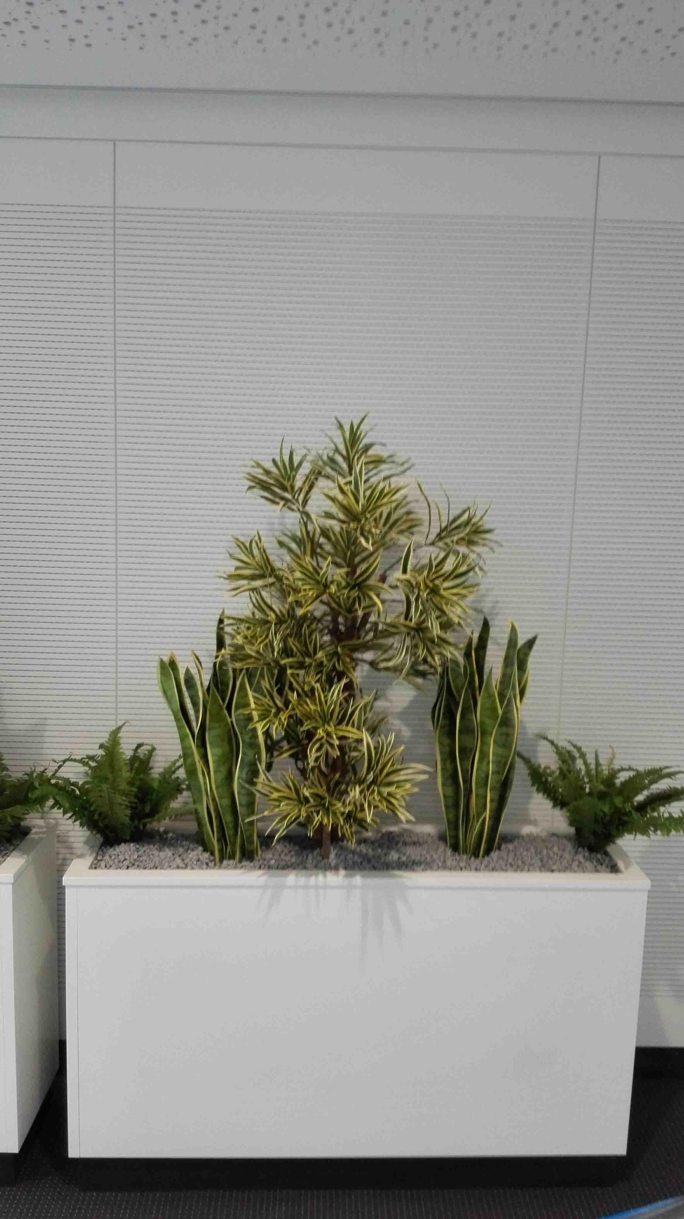 gedike begr nungen hochwertige textilpflanzen ihr zertifizierter partner. Black Bedroom Furniture Sets. Home Design Ideas