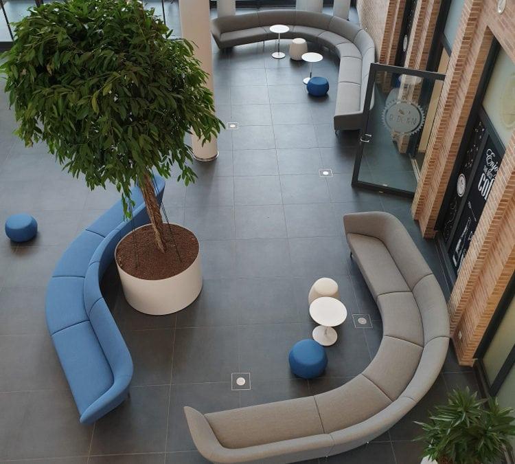 Wie  entsteht  eine  Innenraumbegrünung ? Hier ein Beispiel einer Begrünung mit ca. 1500 mobilen Pflanzgefäßen, Großbäumen und Moosbildern