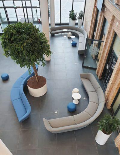 Eingangsbereich-Planzen